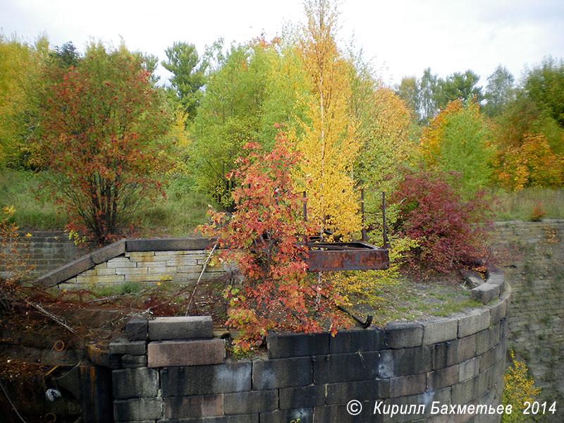 Остатки разводного моста на Петровском доке